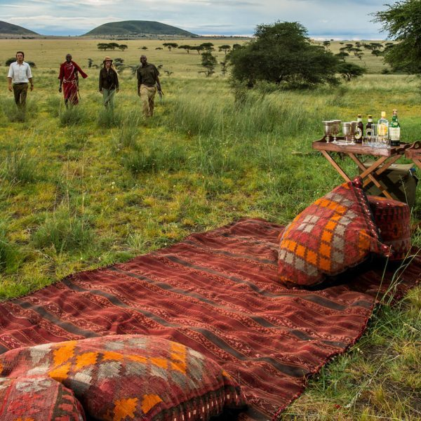 Is it safe to travel to Africa on safari-