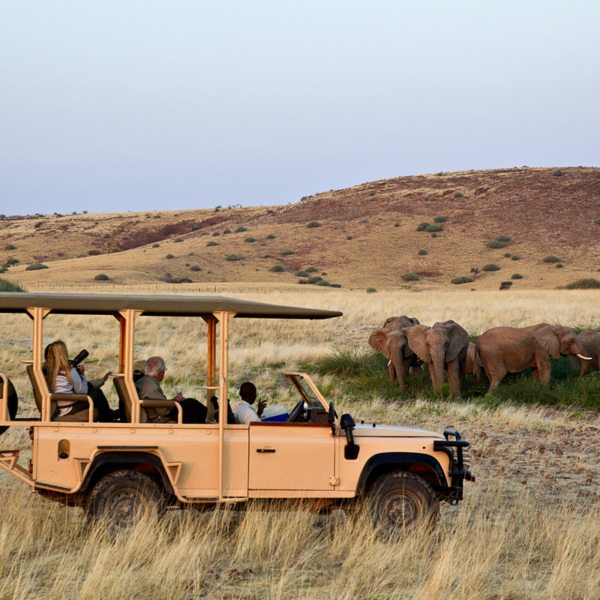 Explore the surrounds of Desert Rhino Camp during games drives. © Wilderness Safaris