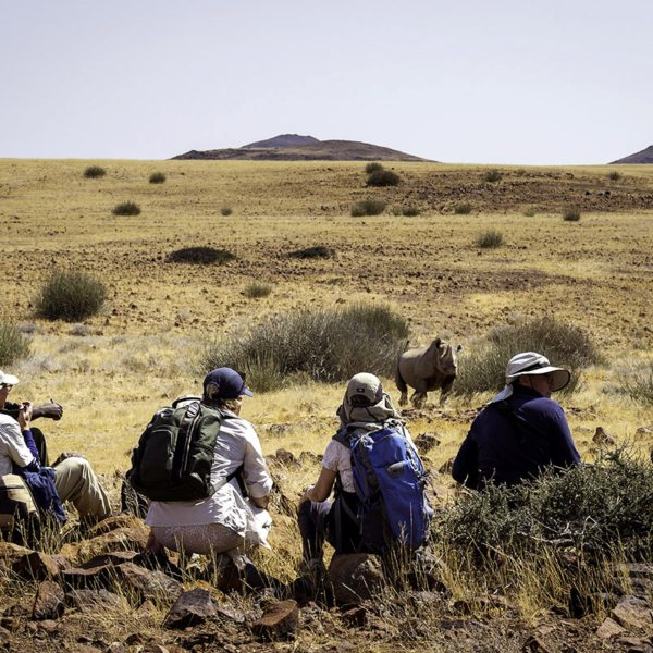 Tracking desert rhino on foot is an authentic African experience. © Wilderness Safaris