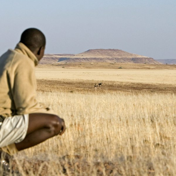 You'll likely see other animals when tracking desert rhino on foot, like oryx. © Wilderness Safaris