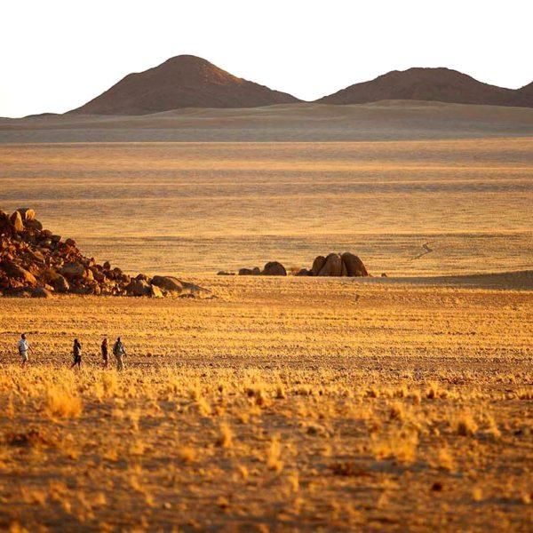 Go on a walking safari from Sossusvlei Desert Lodge. © &Beyond