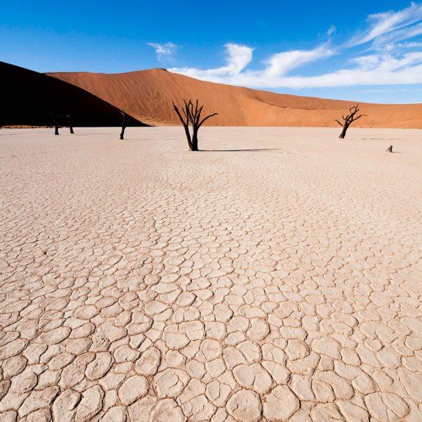Deadvlei is generally bone dry. © Wilderness Safaris