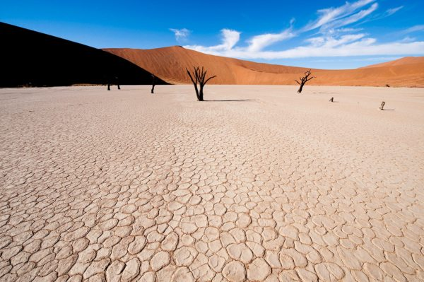 The pans near Little Kulala are often bone dry, like Deadvlei. © Wilderness Safaris