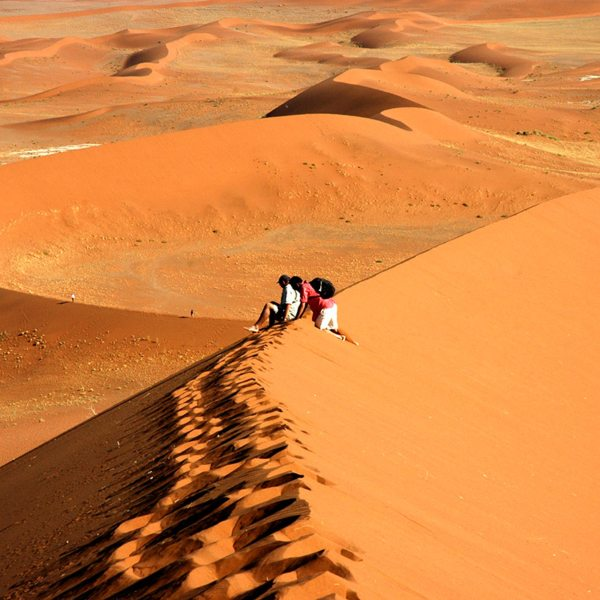 A walk up the surrounding dunes will give you a great view of Deadvlei. © Peter Dunning