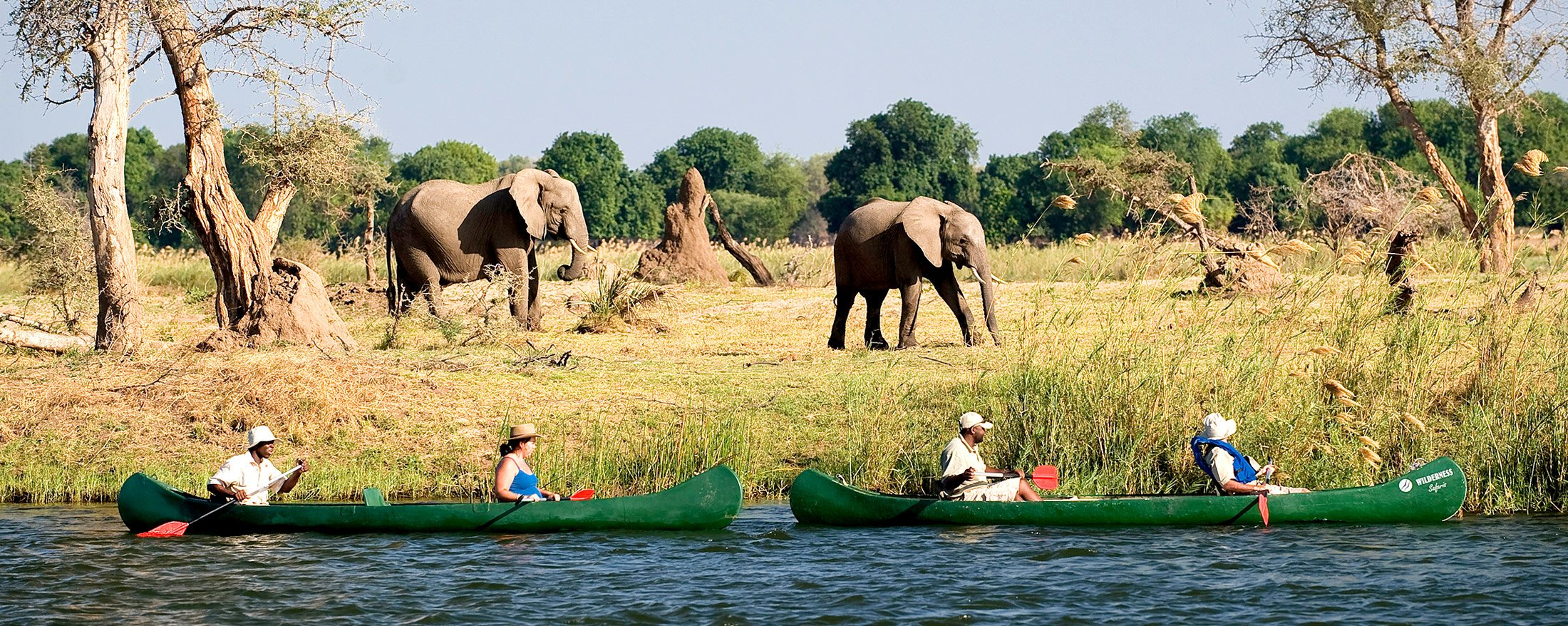 Zambezi Canoe Safari | Drift along the Zambezi shore and see what wildlife you can spot on a canoe safari.