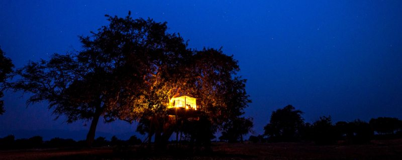 The sleepout deck at Ruckomechi Camp in Mana Pools is tucked up in a tree.
