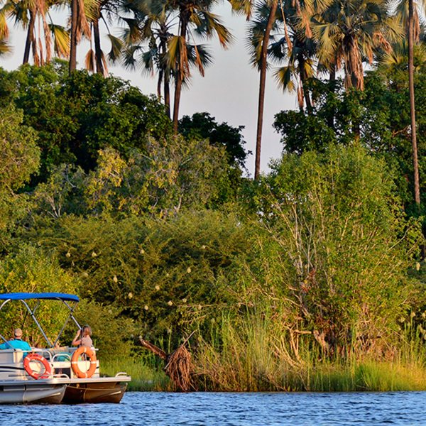 See the area from the water with a Zambezi River cruise from Victoria Falls River Lodge.