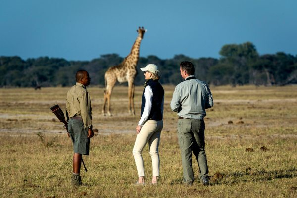 Linkwasha Camp offers walking safaris. © Wilderness Safaris