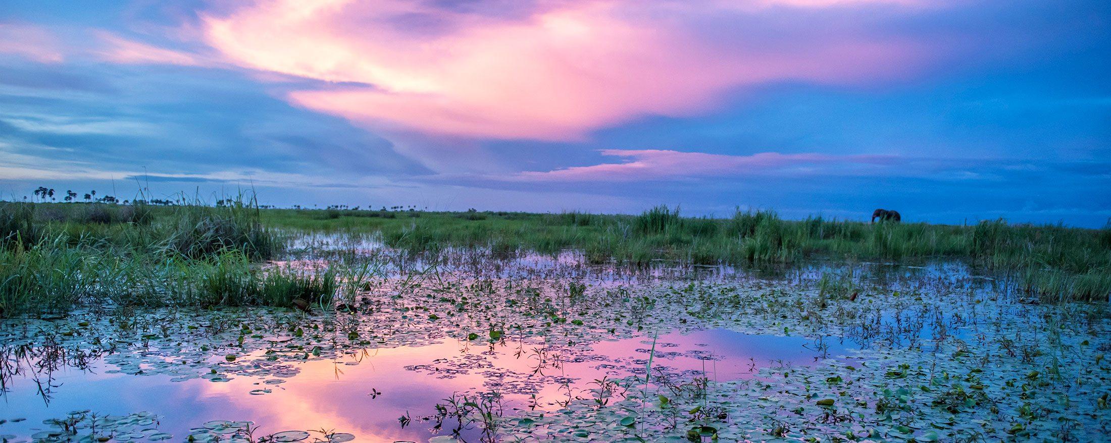 Linyanti safari | An enchanting part of Botswana.