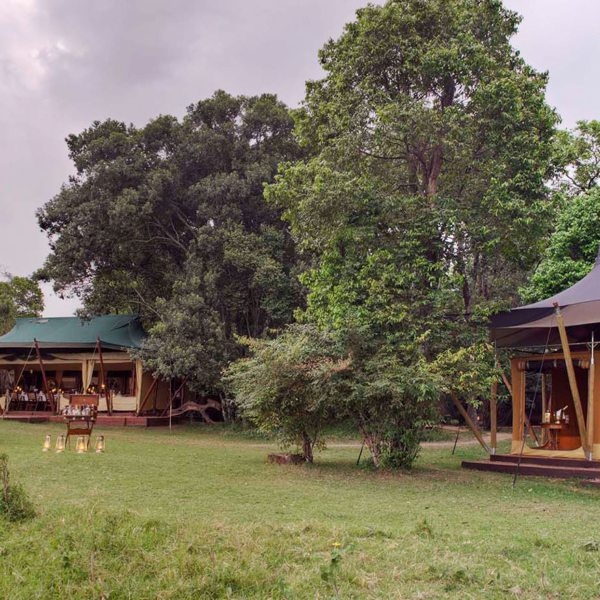 Elephant Pepper Camp is small and exclusive, located away from other lodges in the Masai Mara.