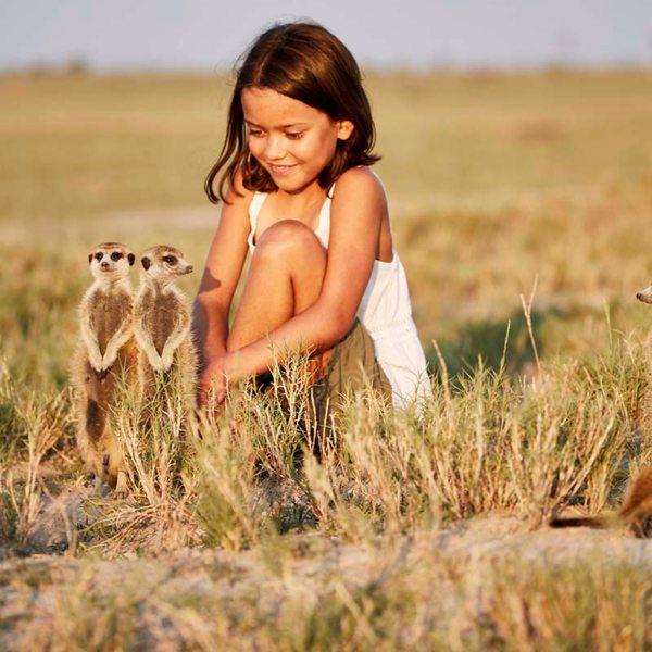 The Kalahari meerkats are not dangerous at all. © Uncharted Africa