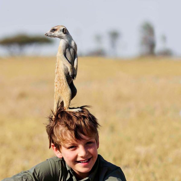 The Kalahari meerkats think nothing of climbing on top of your head to get a better view. © Uncharted Africa