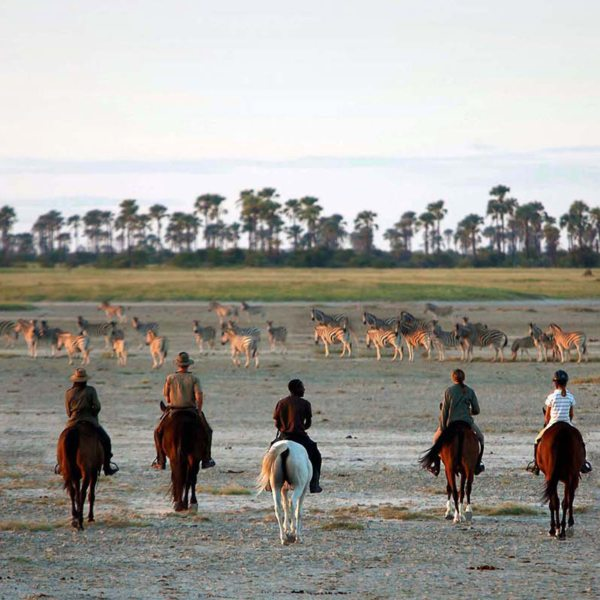 San Camp offers horse safaris. © Uncharted Africa
