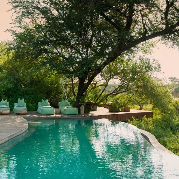 With a pool like this, you'll be as cool as a cucumber at Ngala Tented Camp. © &Beyond