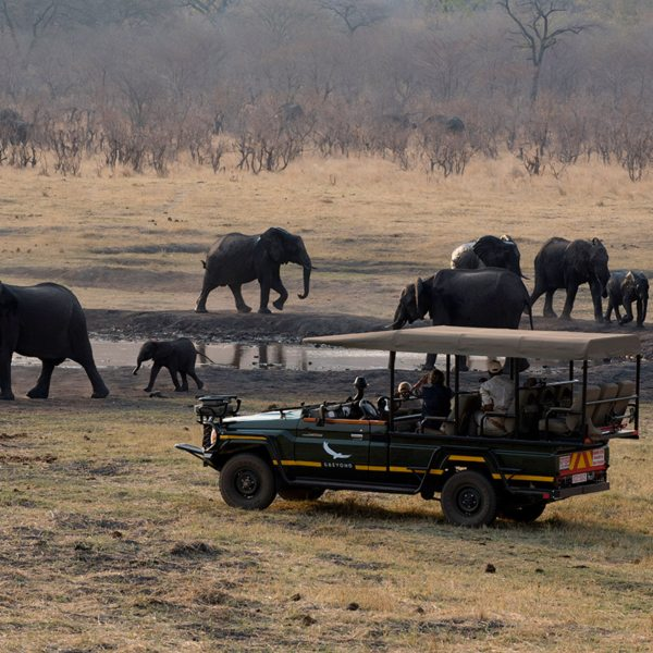 You'll see plenty of elephant on your game drives from Matetsi River Lodge. © &Beyond