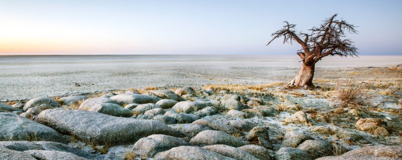 Vast, magical Makgadikgadi Pans offers several sites worth exploring.