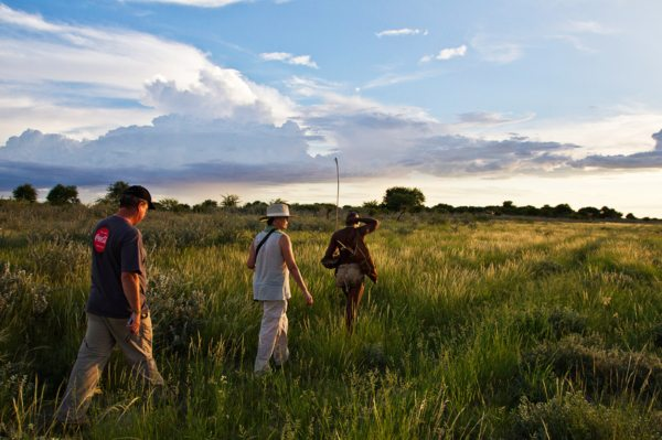 Kalahari Plains Camp offers San-guided walking safaris. © Wilderness Safaris