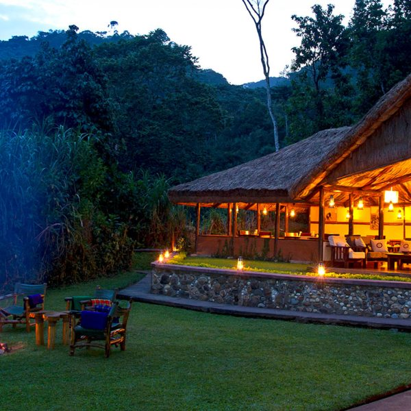 Sanctuary Gorilla Forest Camp is surrounded by lush lawns.
