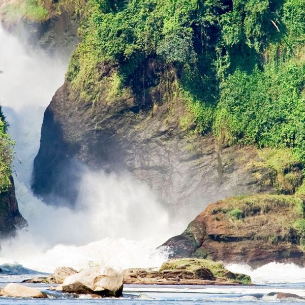 Luxury safaris in Murchison Falls National Park will let you see the impressive Murchison Falls.