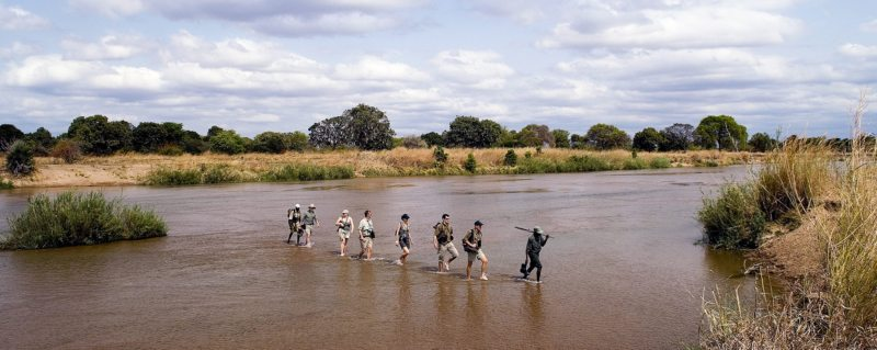 You'll even traverse rivers during your Zambia walking safari.