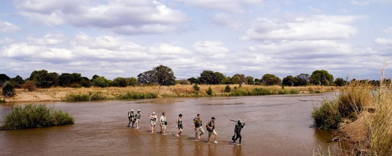 You'll even traverse rivers during your Zambia walking safari.