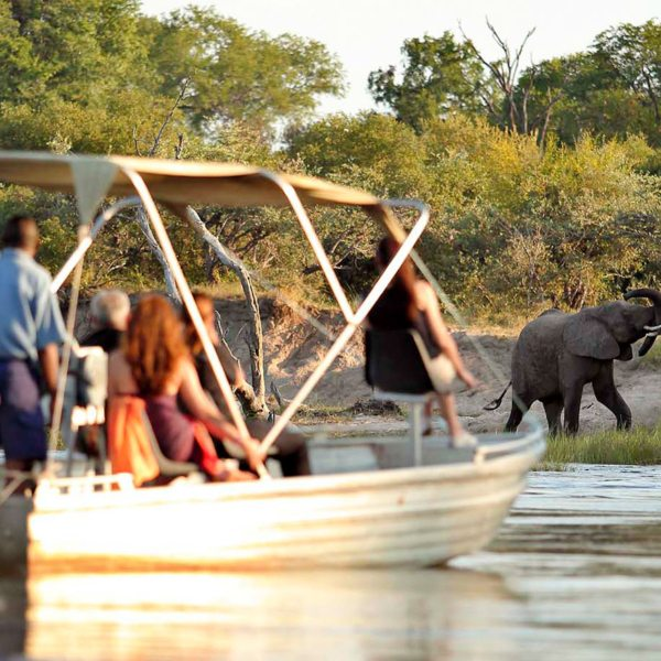 Boat safaris on the Zambezi are a must at The River Club.