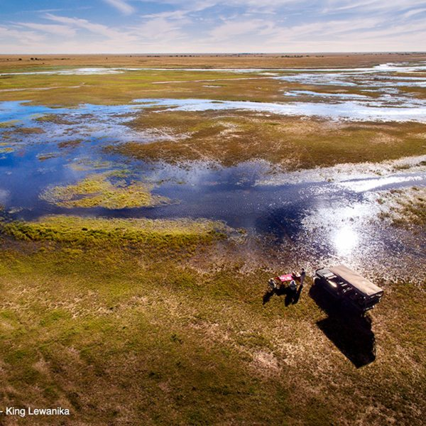 After the rains, there's plenty of water near King Lewanika Lodge. © Time + Tide