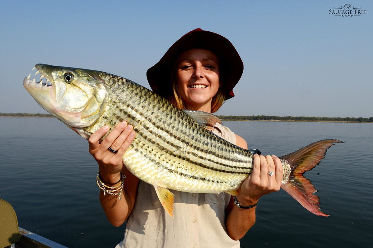 Experiences catch release tiger fishing in zambia art for Delta fishing spots