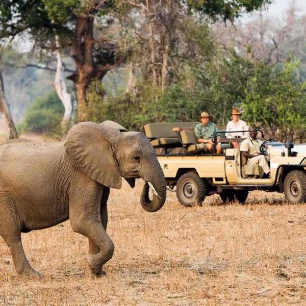 Being in a safari vehicle is wonderful, but there's nothing like a Zambia walking safari. © Robin Pope Safaris