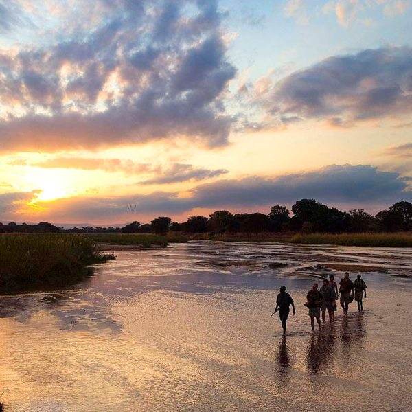 You'll be up with the birds during your Zambia walking safari. © Robin Pope Safaris