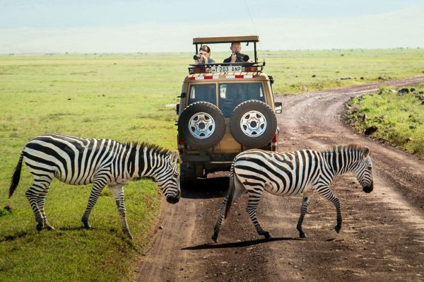 Gibb's Farm is close to Ngorongoro Crater, for safaris. © Classic Portfolio