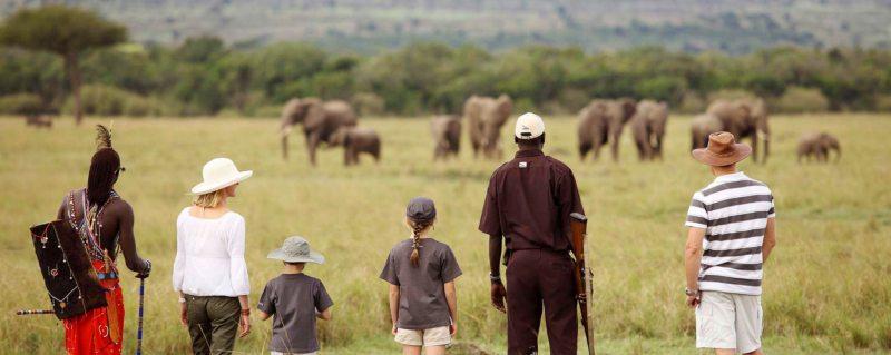 Family Safari Holidays In Africa | Art Of Safari