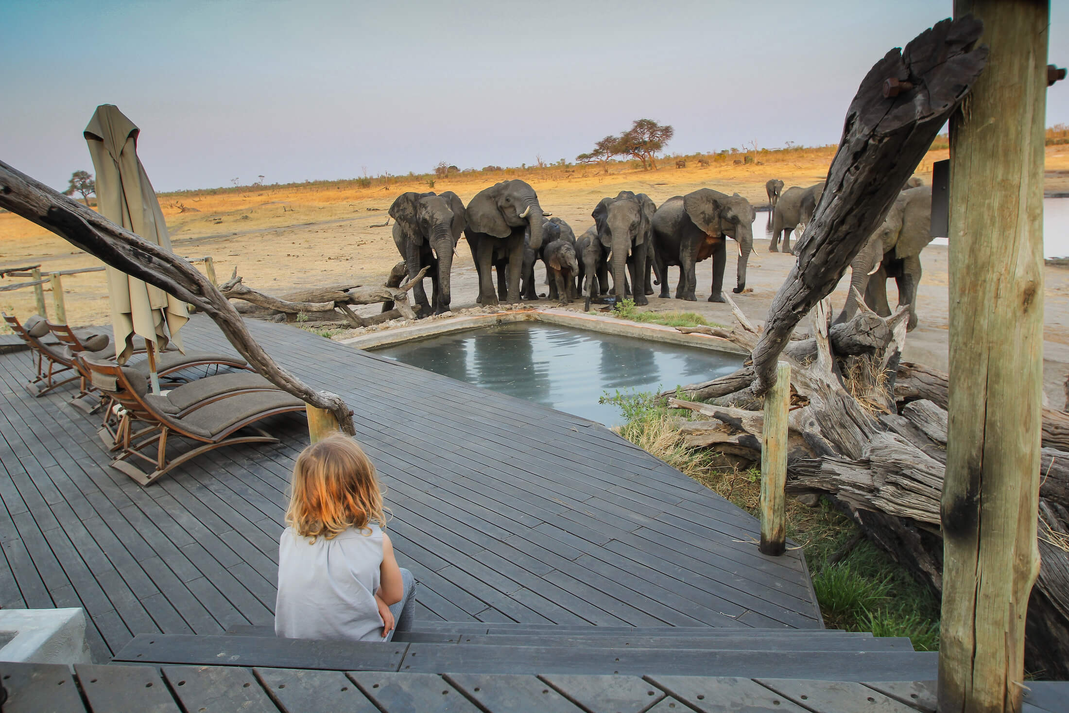 Clever water troughs, like this one, can entice wildlife to come right into camp. © Gary Lotter