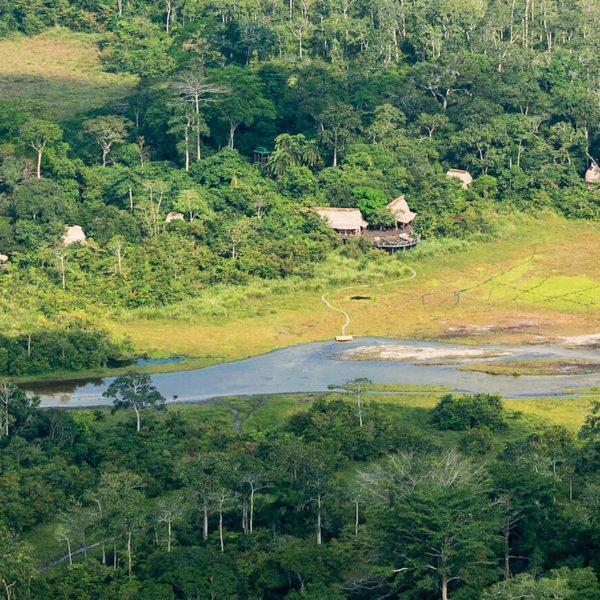 Lango Camp is situated in south-central Odzala-Kokoua National Park. © Odzala Discovery Camps