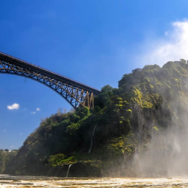 You'll cross the iconic Victoria Falls Bridge on your train safari.
