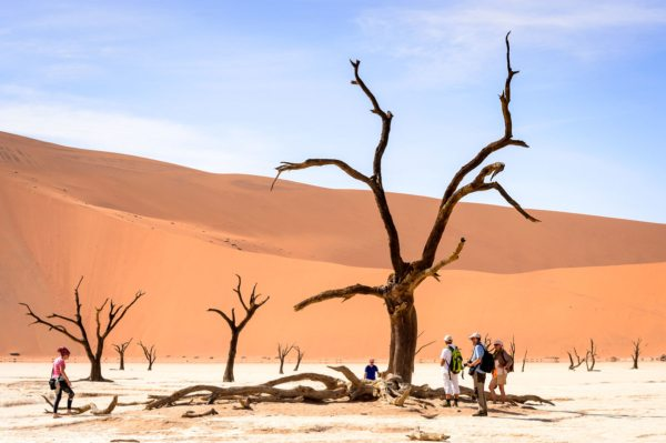 Deadvlei is otherworldly.