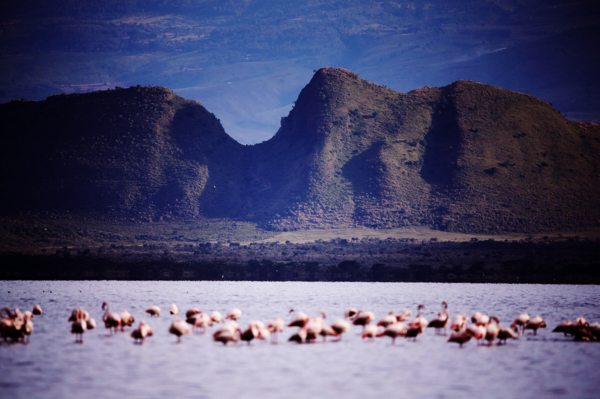 Lake Elementeita is set next to Sleeping Warrior Hill. © Serena Hotels