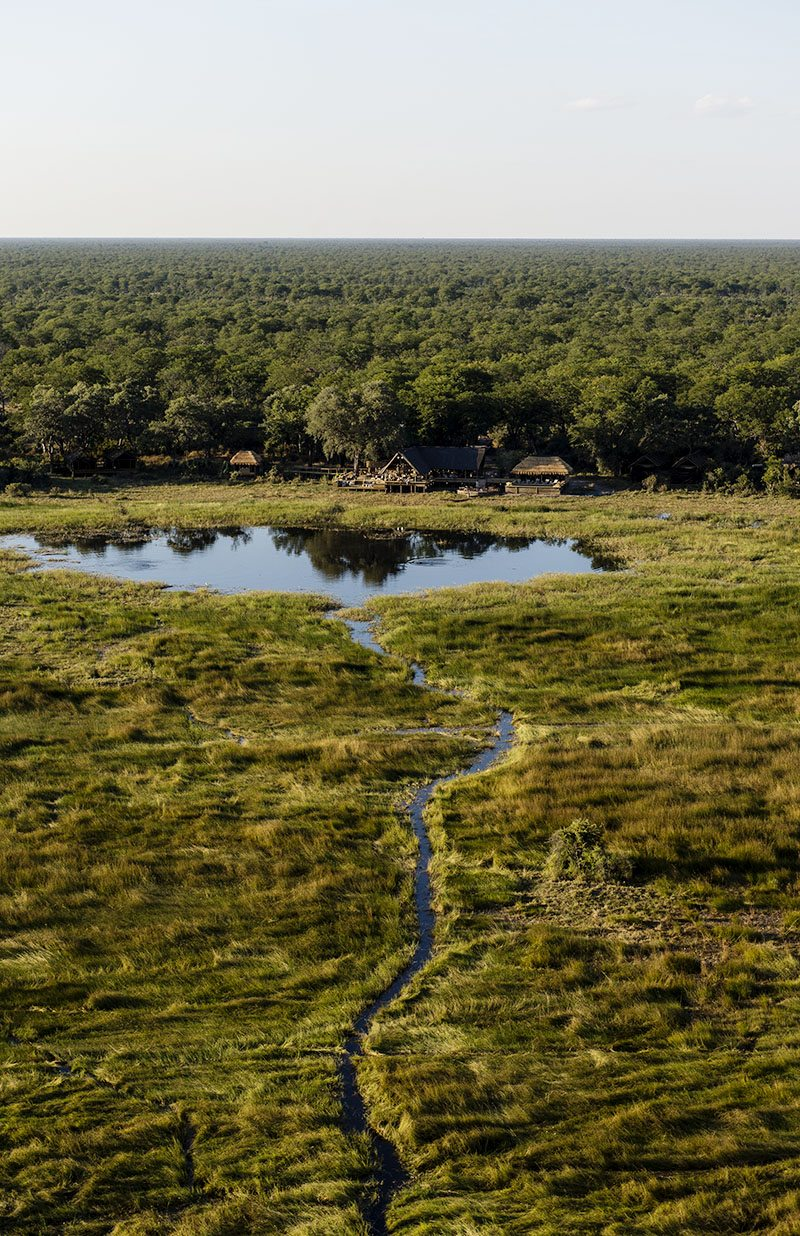 Natural Selection Travel Safari