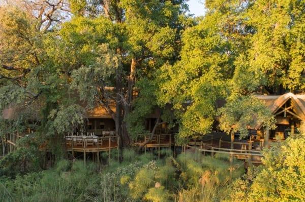 At Camp Moremi you'll be surrounded by vivid, emerald shades. © Desert & Delta Safaris