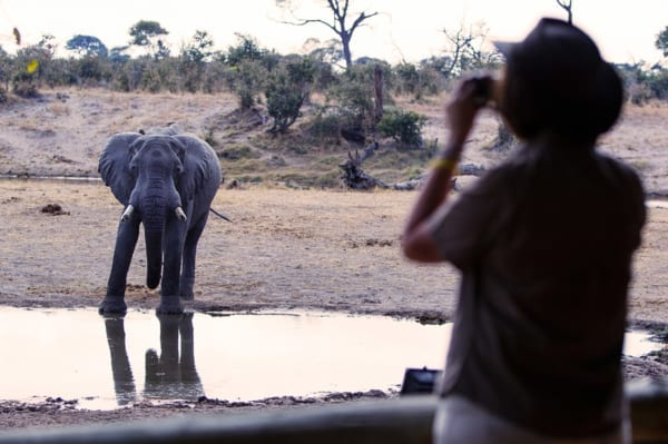 Savute Safari Lodge's waterhole attracts lots of wildlife, like elephant. © Desert & Delta Safaris