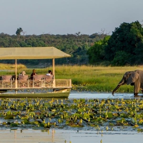 Boating excursions are available from Chobe Savanna Lodge. © Desert & Delta Safaris