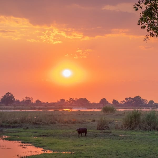 A luxury Caprivi safari will change your perceptions about Namibia.