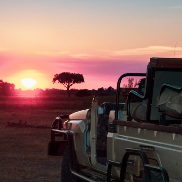 Evening game drives in South Luangwa come with sundowners stops. © Art of Safari