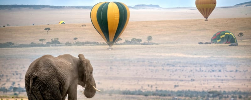 Kenya Masai Mara Hotair Ballooning